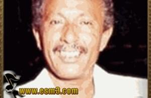 محمد سعد عبد الله كامل